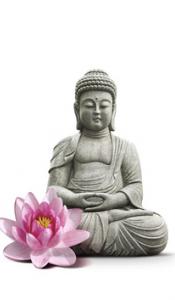 lotus-beeld